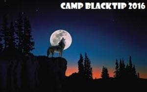 Blacktip